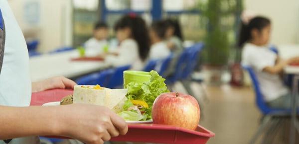 Saiba mais sobre o curso Acompanhamento Nutricional no Espaço Escolar