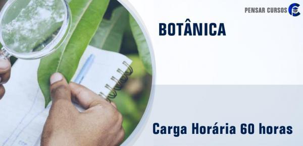 Saiba mais sobre o curso Botânica