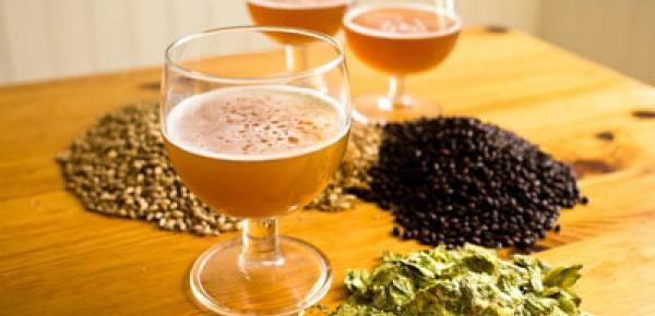 Saiba mais sobre o curso Minicurso Cerveja Artesanal