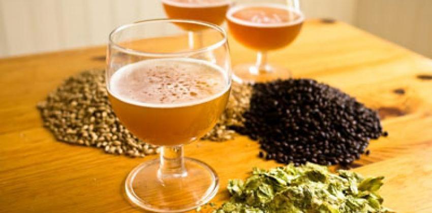 Minicurso Cerveja Artesanal