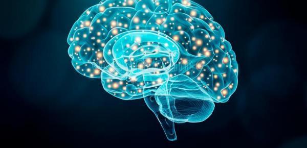 Saiba mais sobre o curso Cognição e Comportamento