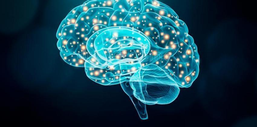 Cognição e Comportamento