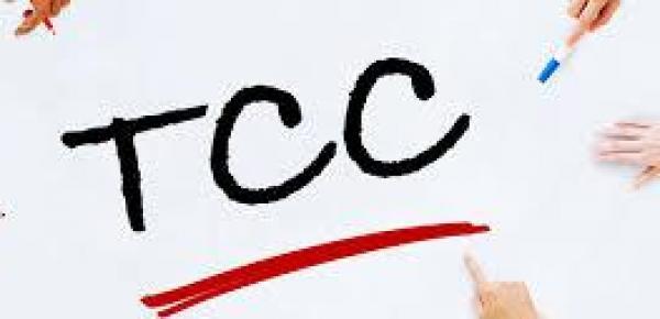 Saiba mais sobre o curso Como elaborar um TCC em forma de artigo