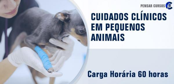 Saiba mais sobre o curso Cuidados Clínicos em Pequenos Animais
