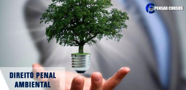 Saiba mais sobre o curso Direito Penal Ambiental