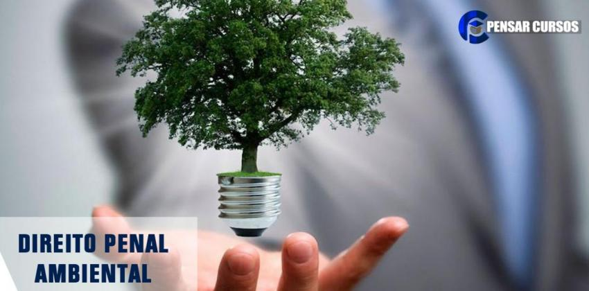 Direito Penal Ambiental