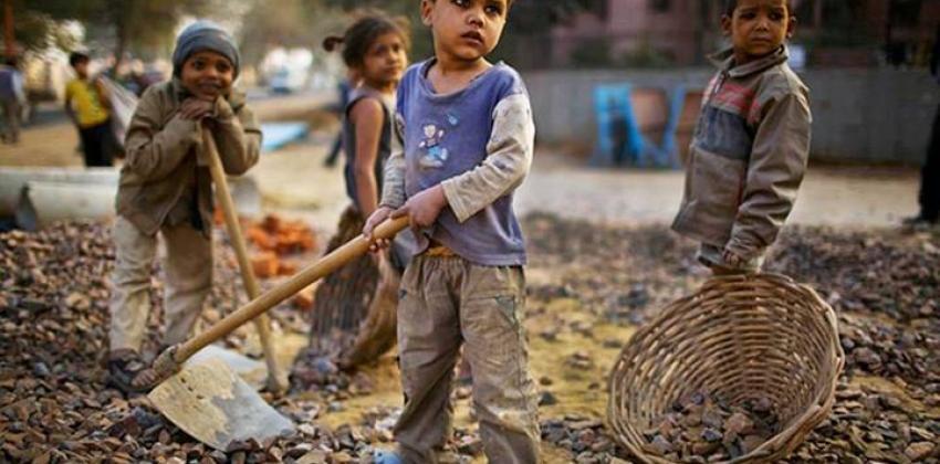 Direitos Fundamentais da Criança e do Adolescente: A Exploração do Trabalho Infantil