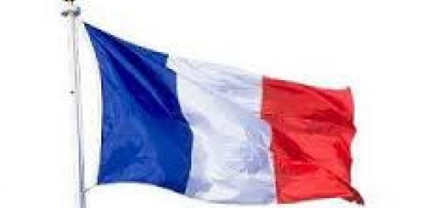 Minicurso Francês