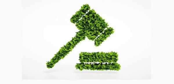 Saiba mais sobre o curso Legislação Ambiental Brasileira