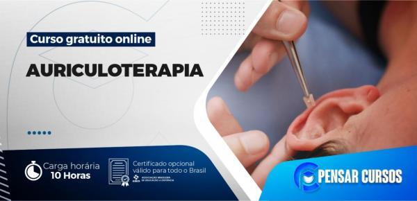 Saiba mais sobre o curso Minicurso Auriculoterapia