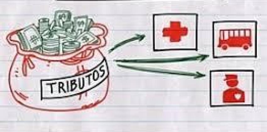 Noções de Orçamento Público
