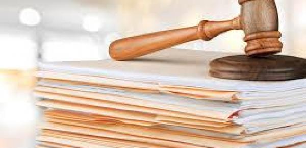 Saiba mais sobre o curso Teoria Geral e Princípios do Direito Administrativo