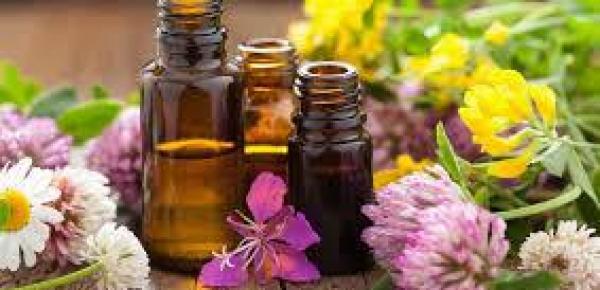 Saiba mais sobre o curso Terapia Floral
