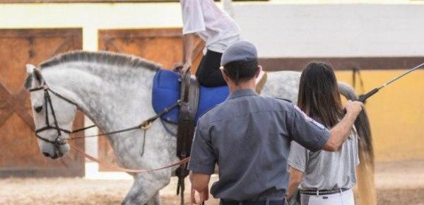 Saiba mais sobre o curso Terapias com Equinos